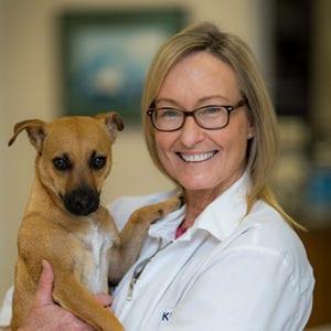 Kathleen Vliet, DVM - Newberry, FL - Jonesville Animal Hospital