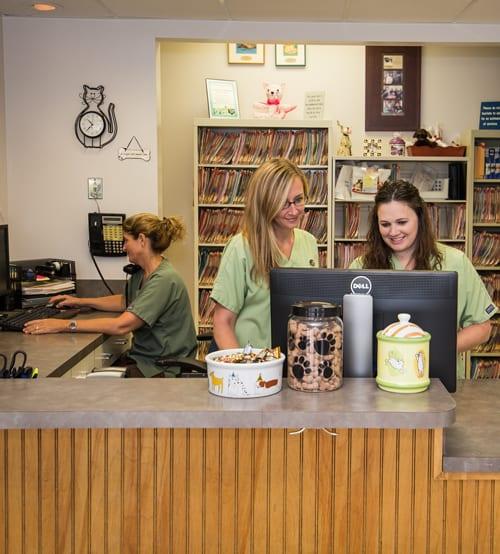 Request an Appointment - Newberry, FL - Jonesville Animal Hospital